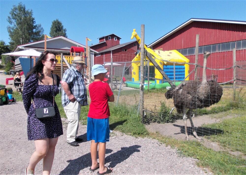 Kilkkilän Farmi Pohjois-Iitin Vuolenkoskella on pihattonautatila, jonka kymmenistä muista pihatarhan eläimistä ja grillikahvilasta rakentui tuhansien lapsiperheiden rakastama retkikohde 4