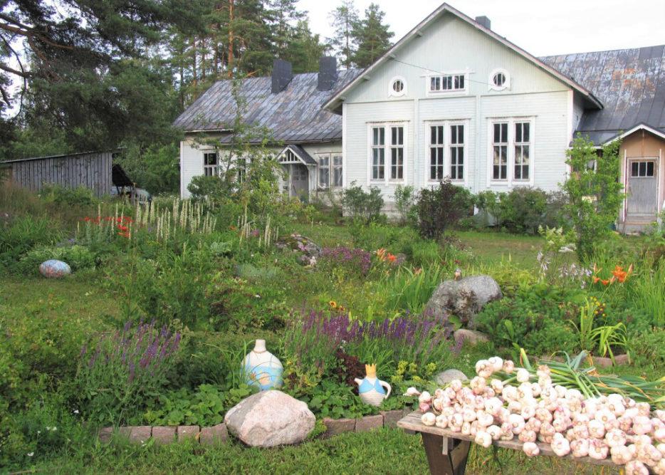 Valkosipulitapahtuma Myllylän koulu