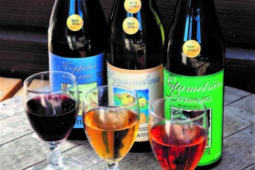Mustila Viini, viinitupa ja puoti 2
