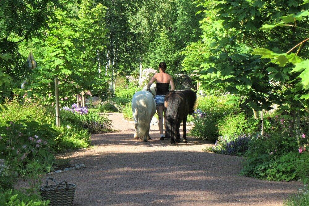 Eija's Garden, Loviisan Ruotsinpyhtää